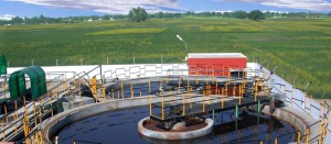 The industry's first ever water effluent treatment plant is set up by OBEETEE